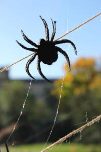 A felt cut out spider at Slanchogled